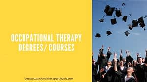 Occupational Therapy Degrees: Courses